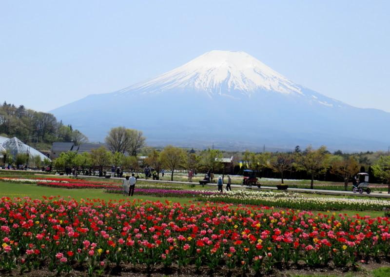 IMG_2348花の都公園