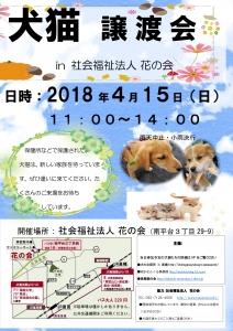 2017年度 犬猫譲渡会 チラシ2 完成版4月15日-1