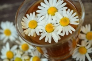 chamomile-chamomile-blossoms-medicinal-herb-1.jpg