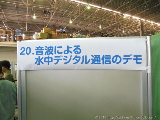 P1050239