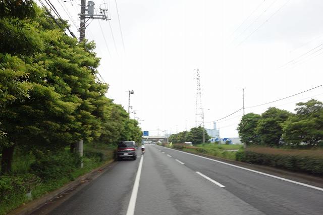 DSC03814.jpg