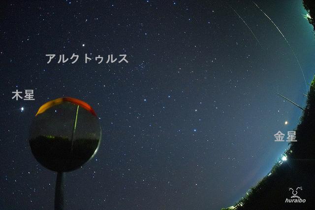 CR-01.jpg