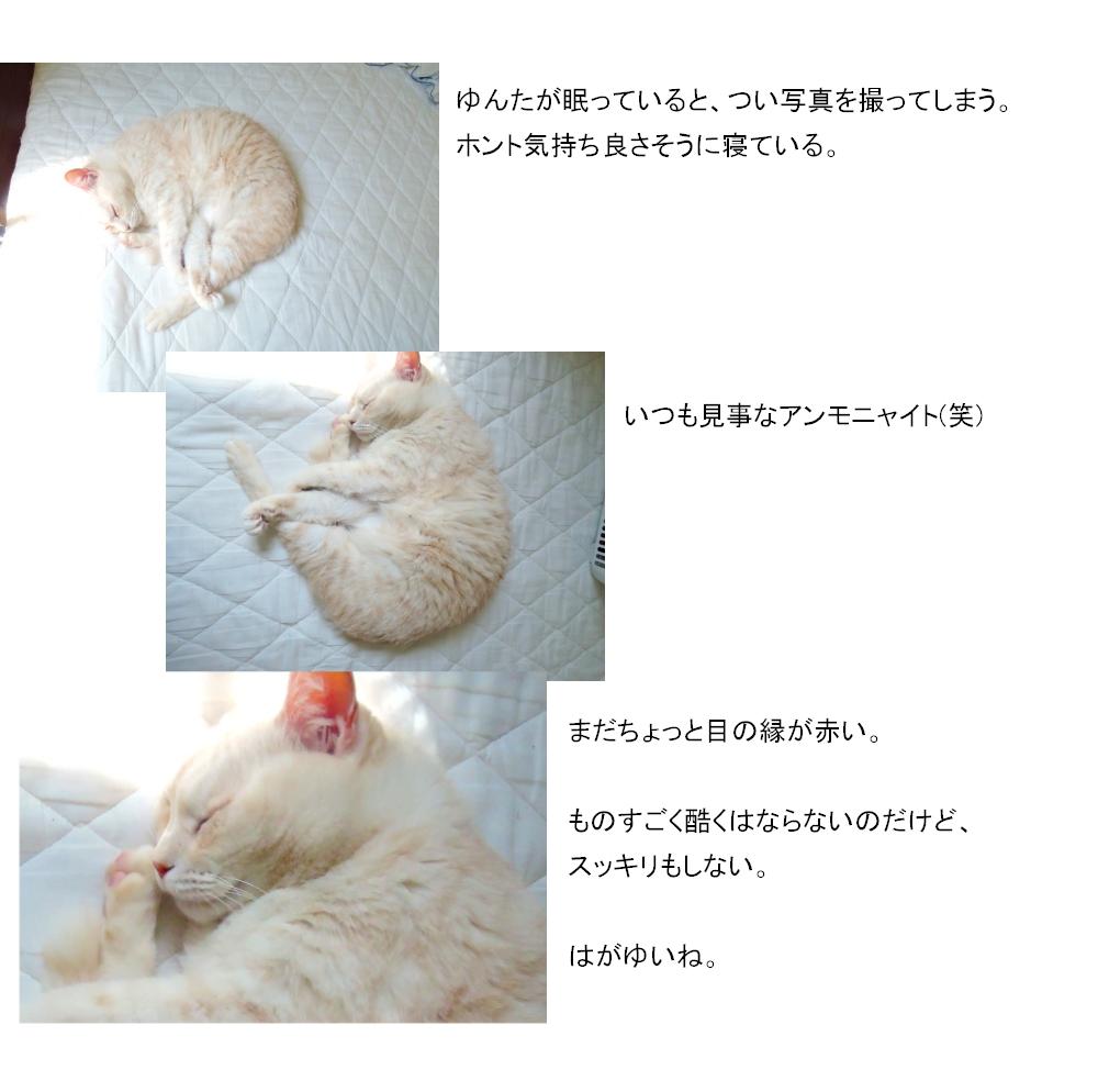 はがゆいカユカユ1-2