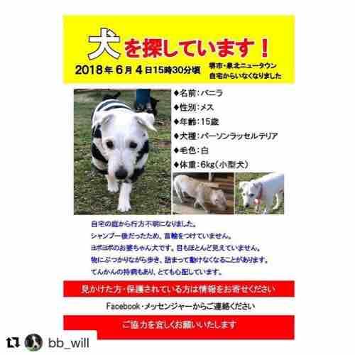 fc2blog_20180609141950a4a.jpg