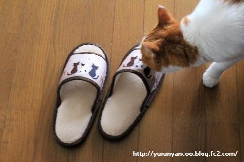 ブログNo.1214(ついつい買ってしまう猫グッズ)1