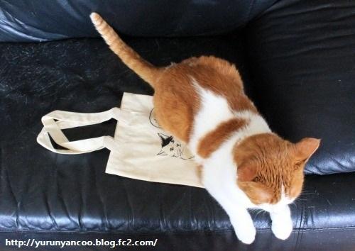 ブログNo.1214(ついつい買ってしまう猫グッズ)6