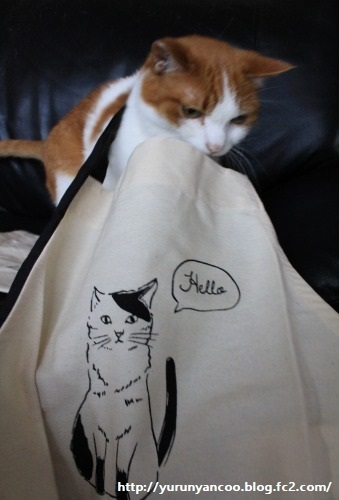ブログNo.1214(ついつい買ってしまう猫グッズ)7