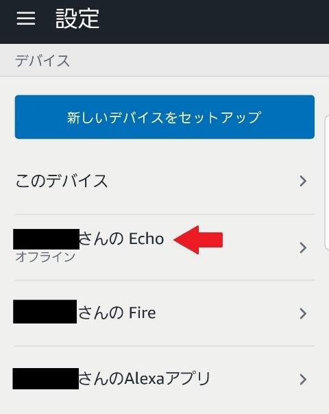 amazon Echo 11