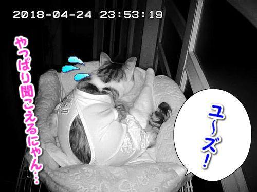 Snapshot_2018_4_24_23_53_20.jpg