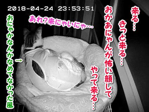 Snapshot_2018_4_24_23_53_52.jpg