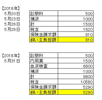 0531医療費