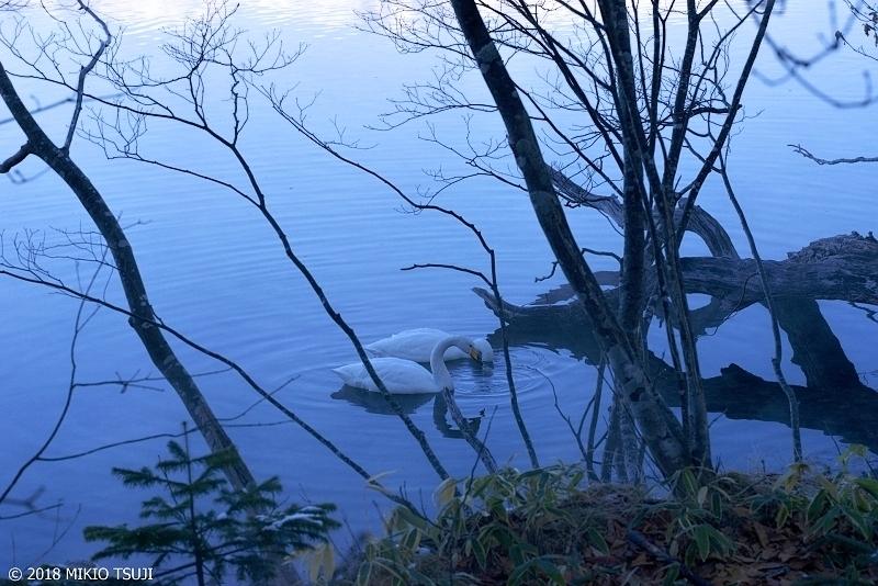 絶景探しの旅 - 0550 うっすらと霧のかかる蒼い白鳥の湖 (屈斜路湖 北海道 弟子屈町)