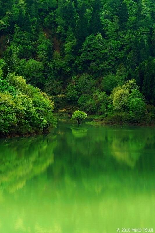絶景探しの旅 - 0580 新緑の手取湖 (石川県 白山市)