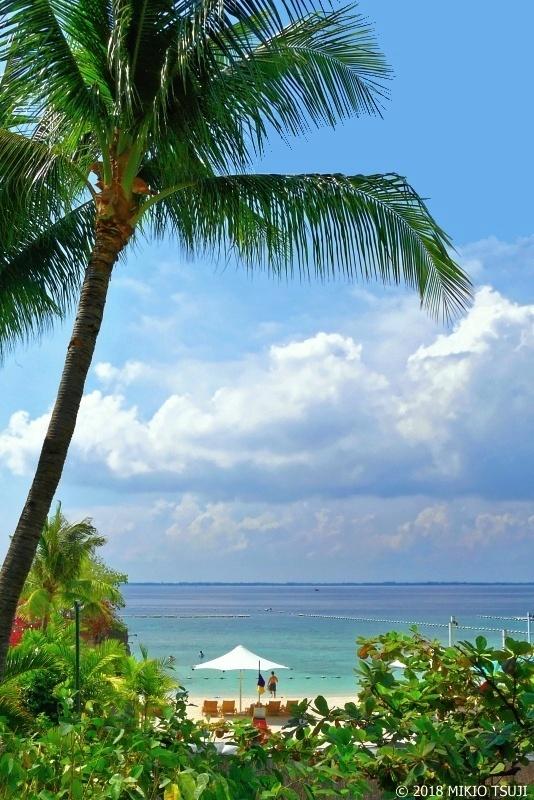 絶景探しの旅 - 0609 南の島のビーチリゾート(シャングリラ マクタン リゾート/フィリピン マクタン島)