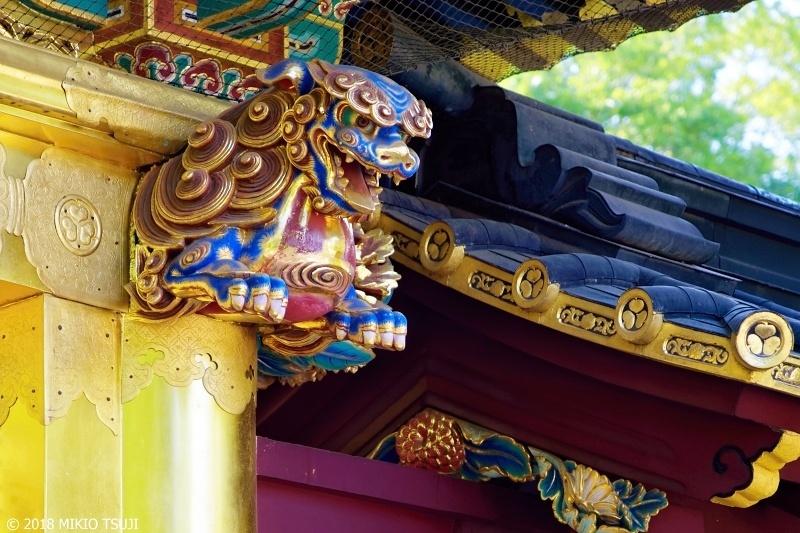 絶景探しの旅 - 0617 上野東照宮 唐門の青い獅子 (東京都 台東区)