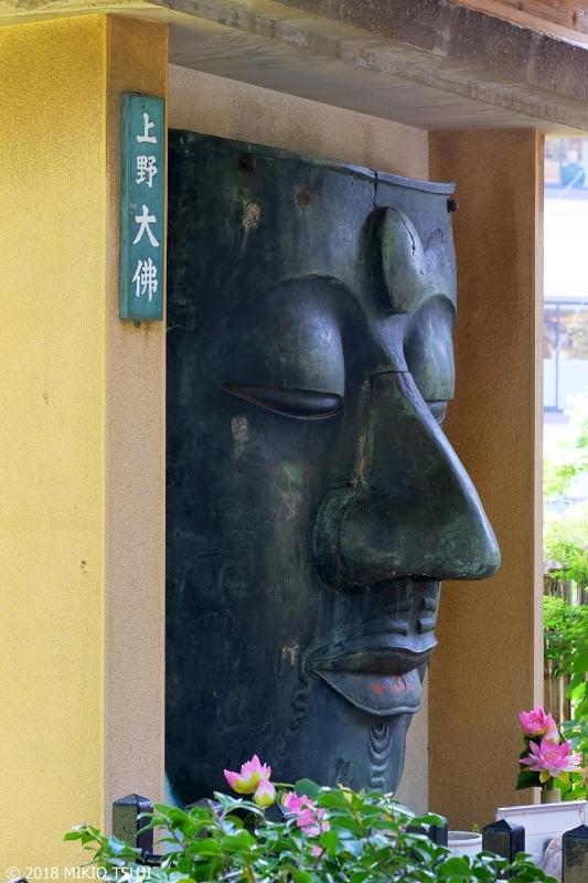 絶景探しの旅 - 0618 上野大仏 落ちた青銅のマスク (東京都 台東区)