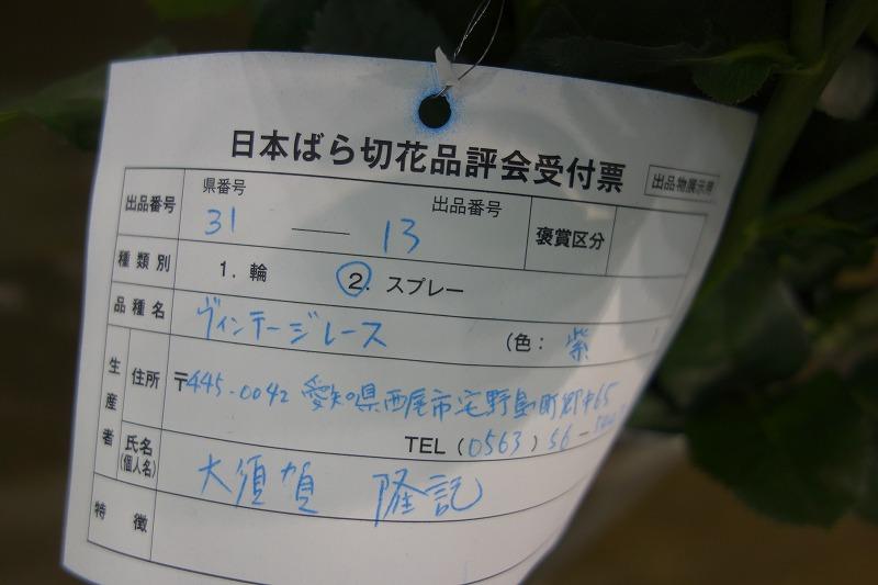 DSC05324.jpg